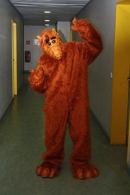 Bestes Kostüm Alf